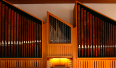 peter orgel